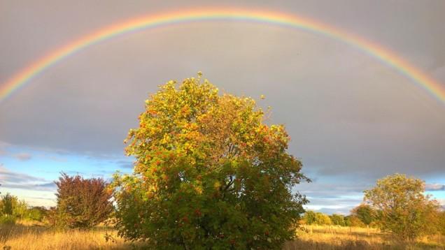 rainbow above rowan priest hill ewell